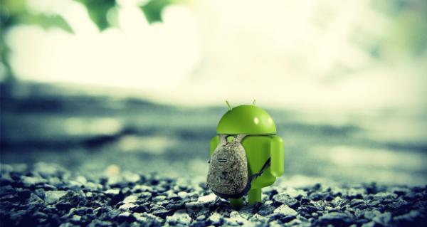 Fascia Bassa Android 2