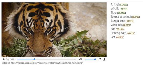 Google Cloud Video Intelligence API